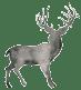 Skye Deer White